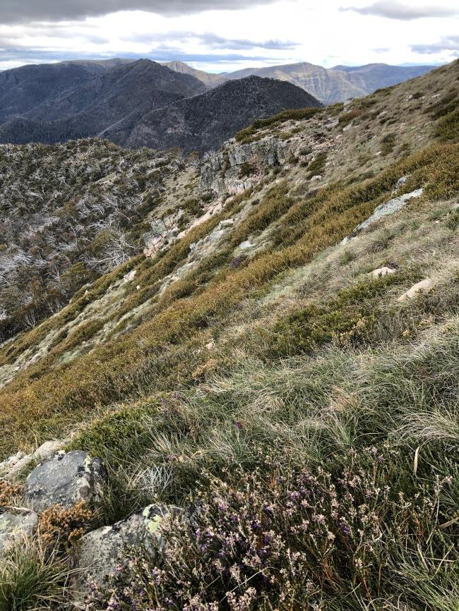 Incredible vistas on Mt Speculation
